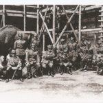 Na zdjęciu: Posąg żubra na Zamku Królewskim. Archiwum Andrzeja Kobalczyka