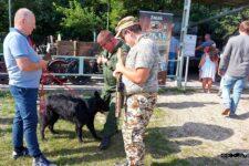 Trzech mężczyzn i duży czrny pies. Jeden z mężczyzn jest w mundurze polowym