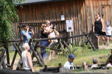 Grupa osób robiąca zdjęcia